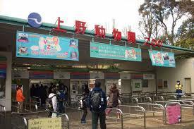上野動物園の駐車場や穴場